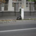 Nesimțire - gunoi lângă stâlp