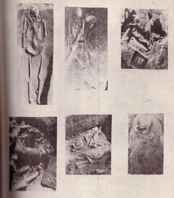 Photo of Morminte sarmatice descoperite în microraionul Hipodrom – oraşul Brăila.
