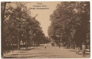 parc monument braila portal