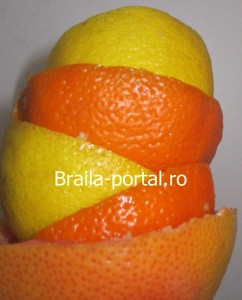 suc natural fructe-braila portal