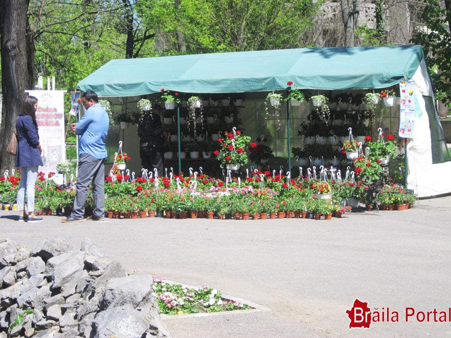Festivalul Florilor - Grădina Mare