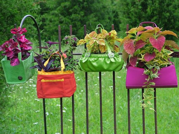 old-purse-flower-pot