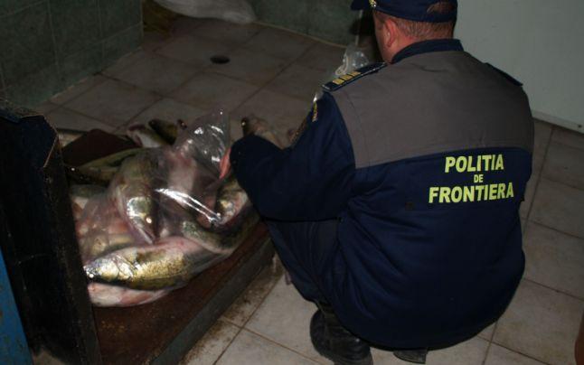 Braconaj pe Dunăre , prinşi cu 187 kg de peşte