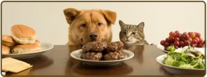 slide1_natural_pet_food_dog_cat
