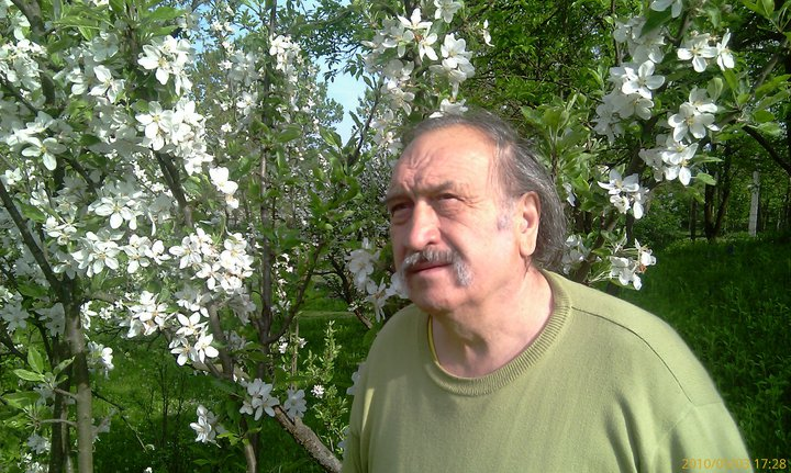 Photo of Sonete pentru Brăileni de Aurel M. Buricea (sonet nr. 14)