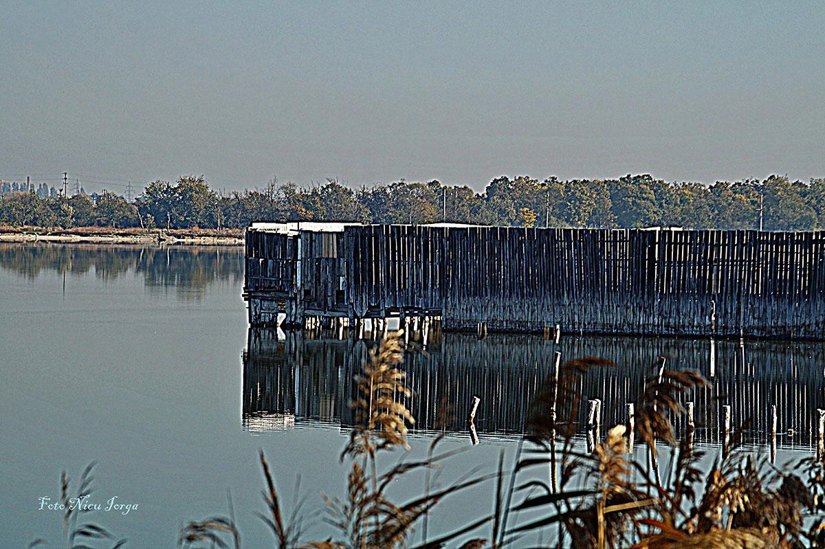 Un crâmpei din Lacul Sărat de Nicu Iorga