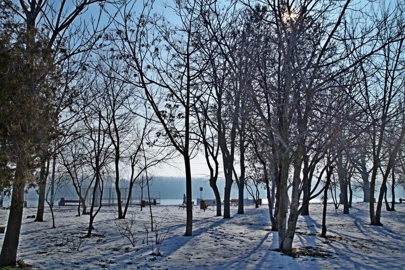 Iarna prin portul Brăila cu Dl. Nicu Iorga