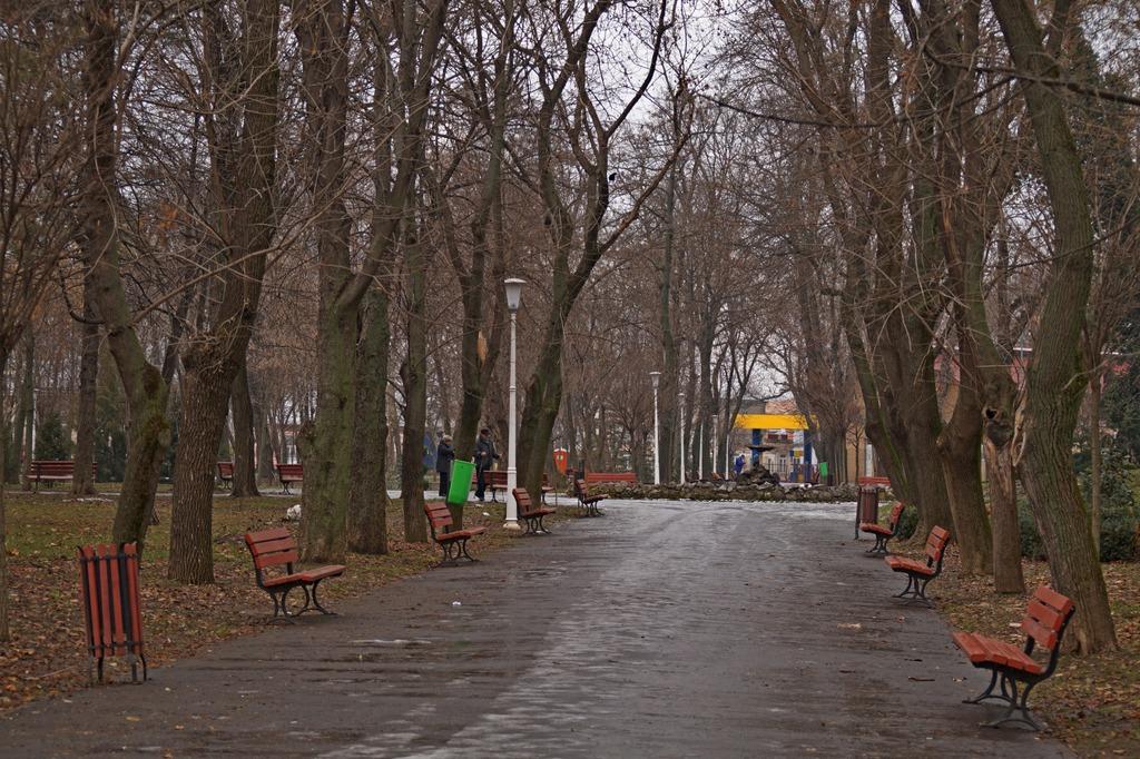Prin Grădina Mare și Centrul cultural Nică Petre by Nicu Iorga