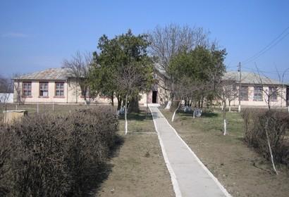 bordei verde scoala braila portal