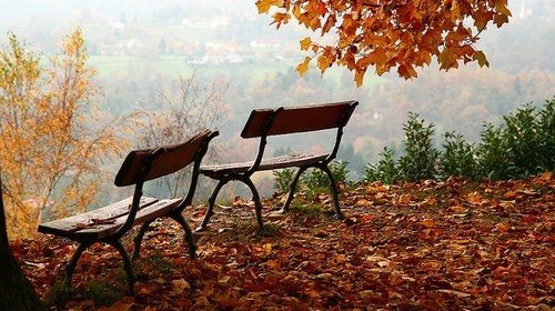 autumn-beautiful-beautifull-nature-photography-Favim.com-436342