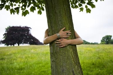 Woman hugging tree in park
